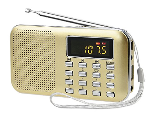 Mini Altavoz PRUNUS Radio Reproductor MP3 AM FM con puerto para tarjet