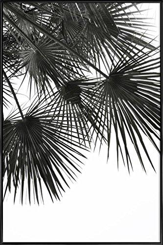 """JUNIQE® Bild mit Rahmen 60x90cm Schwarz & Weiß Palmen - Design """"Endless Summer - Wind"""" (Format: Hoch) - Wandbilder, Gerahmte Bilder & Gerahmte Poster von unabhängigen Künstlern - Botanische Kunst mit Pflanzen - entworfen von Studio Nahili"""