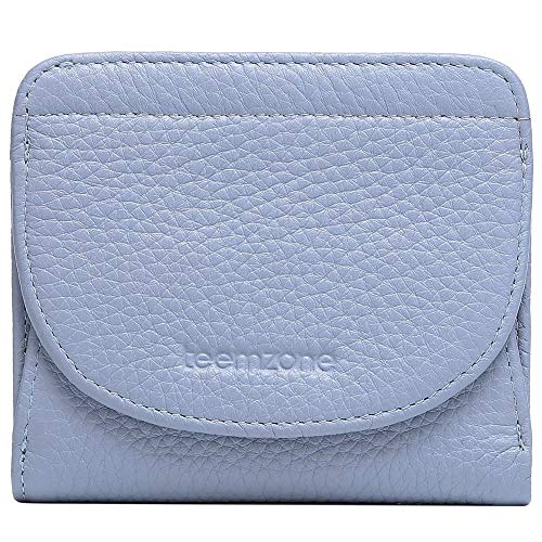 - Kalb-leder-münzen-geldbeutel (Damen Portemonnaie Klein Echtes Leder RFID Schutz mit Münzfach Mini Geldbörse Fraun Portmonee Brieftasche Geldbeutel Mädchen TEEMZONE(Blau))