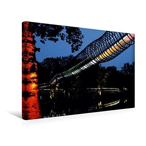 Premium Textil-Leinwand 45 x 30 cm Quer-Format Slinky Springs to Fame, Oberhausen | Wandbild, HD-Bild auf Keilrahmen, Fertigbild auf hochwertigem ... von Christine Daus (CALVENDO Tiere) (Spring Reiten Pferd)