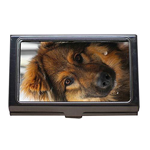Portatarjetas de visita, perro cachorro de animal, mascotas del mejor amigo de cada hombre, estuche para tarjetas de visita de acero inoxidable