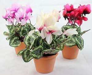 Ciclamino artificiale, piccolo, colore bianco/rosa/cremisi, 18 cm, confezione da 3