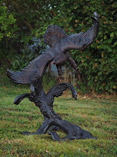 Aigle sur tronc d'arbre