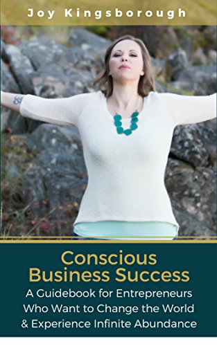 conscious-business-success-a-guidebook-for-entrepreneurs-who-want-to-change-the-world-experience-inf