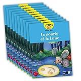 Je lis tout seul ! - Série 5 (***Lot de 10 volumes***)