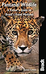 Pantanal Wildlife: A Visitor's Guide To Brazil's Great Wetland (Bradt Wildlife Explorer) First edition by Lowen, James (2010) Taschenbuch