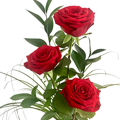 Drei rote Rosen - Inklusive Kultvase und gratis Grußkarte!