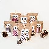DIY Adventskalender Bastelset Christmas Owl red, 1 x 24 Tüten individuell befüllbar, inkl. Sticker