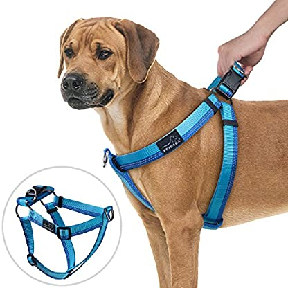 PETBABA No Pull Dog Harness, Front Clip Give Pet Choke Free Walking, Reflective Safety at Night, Step-in Vest with… 1