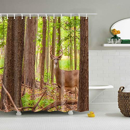 Tall Green Grass (fdswdfg221 Deep Forest, Tall Trees, Green Grass, 1 Deer 3D digital Printing Moisture Proof Mildew Bathroom Curtain 180X180CM+12 Hook)