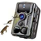 Best Hd Trail Cameras - MTFY Trail Camera, 1080P 16MP Game Camera Review