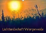 Lichtlandschaft Worpswede (Wandkalender 2019 DIN A3 quer): Lichtdurchflutete Fotos der Landschaft um Worpswede im Teufelsmoor (Monatskalender, 14 Seiten ) (CALVENDO Natur)