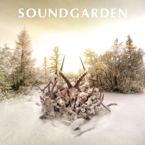 Bones Of Birds (Album Version)