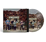 In the End (Picture Disc) [VINYL]