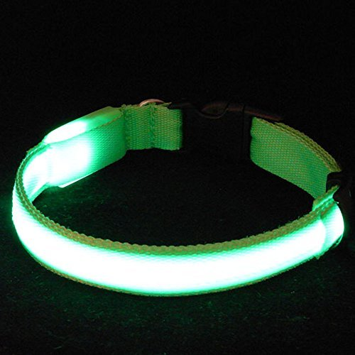 Sijueam Nylon USB Hundehalsband LED Halsband Leuchthalsband mit USB Kabel für Haustier Hunden Grün, L - 3