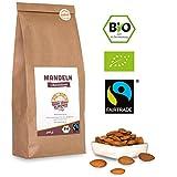 Bio Fairtrade Mandeln: Naturbelassen (500g) aus Palästina