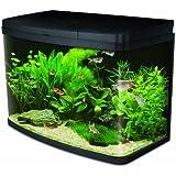 Interpet Insight Glass Aquarium Fish Tank Premium Kit - 64 Litre