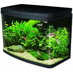Interpet Insight Glass Aquariums, kit de démarrage Complet Premium