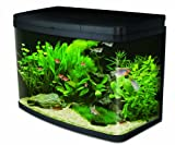 Interpet Insight Glass Aquarium Fish Tank Premium Kit, 64 Litre