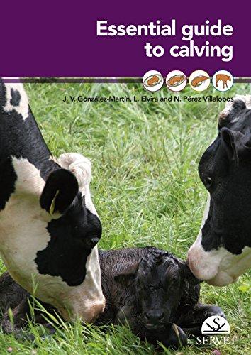 Essential guide to calving - Veterinary books - Editorial Servet por Aa.Vv.