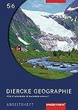 Diercke Geographie - Ausgabe 2008 Sachsen-Anhalt: Arbeitsheft 5 / 6 - Notburga Protze, Margit Colditz