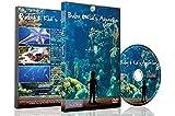 Entspannende Aquarium DVD - Baby and Kinder Aquarium - für Kinder als Schlafhilfe und Kinder Unterhaltung