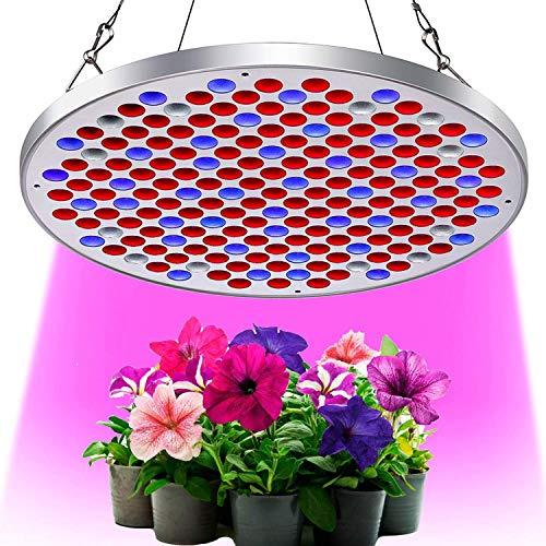 KINGBO Neu 50W LED Pflanzenlampe Grow Light Vollspektrum Pflanzenlicht Led Grow Lamp für Pflanzen Gewächshaus Hydrokulturpflanzen Seeding und Blumen (C-50W) (100 Watt Led-licht-lampe)