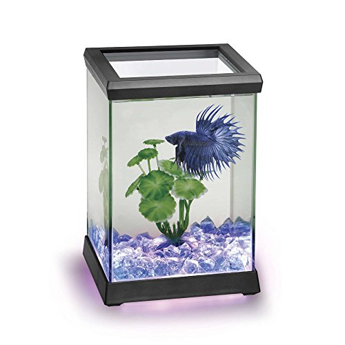 Ocean Free AT619A Kit Betta Space Led