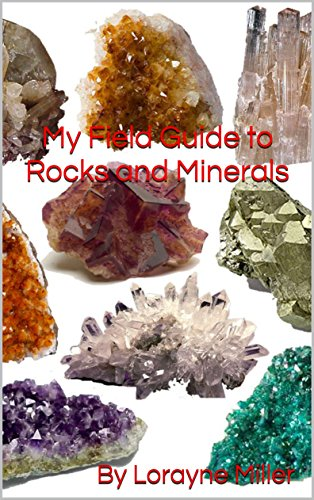 My Field Guide to Rocks and Minerals (English Edition)