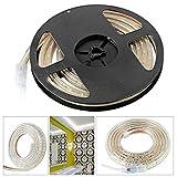COCOMIA LED Streifen Lichterkette LED-Stripe Warmweiß & Kaltweiß mit Wasserdicht Stecker,Außen 6500K 3528 SMD IP65 230V 72W für Deko Party Küche Weihnachten (2M, Kaltweiß)