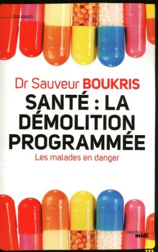 Lire un Santé : la démolition programmée pdf