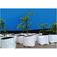 KURU KURUPPATH GROUP UV Treated, Perfect for Terrace, Balcony, Kitchen Vegetable and Flowering Plants Garden, Flats…