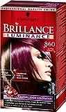 Brillance Aufheller Luminance, 860 Ultraviolett, 3er Pack (3 x 1 Stück)