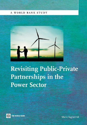 revisiting-public-private-partnerships-in-the-power-sector