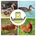 bulrusely Pet Reflective Vest Einstellbare Hühnerkleidung Reflektierende Hühnerweste Sicherheitsjacke Warnweste Schutzhalter Für Hühner Und Enten
