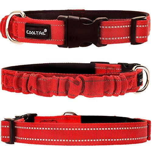 KOOLTAIL Hundehalsband mit Griff - reflektierende Streifen Nylon Gurtband Verstellbares Halsband mit Polsterung innen für kleine, mittelgroße und große Hunde -