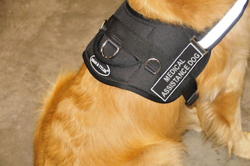 Dean-Tyler-DT-Works-Medical-Assistance-Dog-Harness-S-Black-White