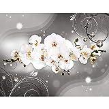 Fototapete Blumen Orchidee Vlies Wand Tapete Wohnzimmer Schlafzimmer Büro Flur Dekoration Wandbilder XXL Moderne Wanddeko - 100% MADE IN GERMANY - Runa Tapeten 9234010b