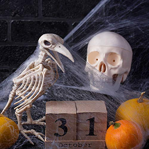 solawill Halloween Spinnennetz , 2 pcs Spinnweben mit 10 Spinnen Halloween Decoration  Dehnbare Spinngewebe für Halloween Decoration Party Karneval Deko - 5