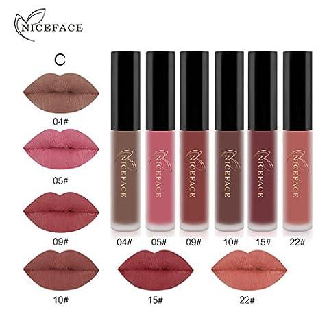 Bluestercool 6pcs Mode Matte Imperméable Rouge à Lèvres Liquide Cosmétiques Kit Sexy Lip Gloss (C)