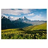 artboxONE Poster 90x60 cm Natur Eiger with Alpine Meadow