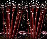 24 Stück rotbraune Gartenfackel 120 cm aus Bambus