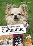 Savoir vivre avec mon Chihuahua + Vidéos