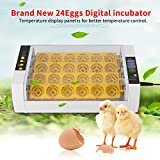 Cocoarm Inkubator Automatische 24 Eier Brutmaschine Brutapparat Flächenbrüter Brüter Motorbrüter mit LED Temperaturanzeige für Huhn Ente Gans Wachtel