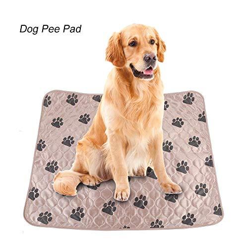 Hund Pee Pad Holder - Delaman Waschbarer Hund Peeing Bett Wasserdichte Urinmatte Wiederverwendbar für Hunde Katzen (Größe : L) -