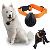 Malloom® Dogs Puppy Monitor Video Camera Recorder Pet Collar Eye Cam