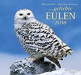 Geliebte Eulen 2018 - DuMont Wandkalender - mit den wichtigsten Feiertagen - Format 38,0 x 35,5 cm
