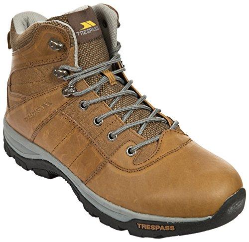 Trespass Forrester, Chaussures Multisport Outdoor Homme Beige (Oak)