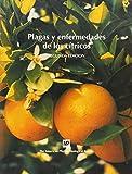 Best Prensas de cítricos - Plagasyenfermedadesdeloscítricos Review
