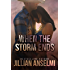 When the Storm Ends